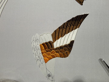 六鳥2 (4).JPG